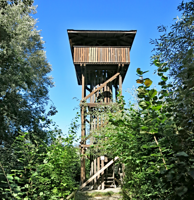 200618_Häftli2.png