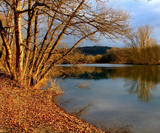 200620Baggersee1.png